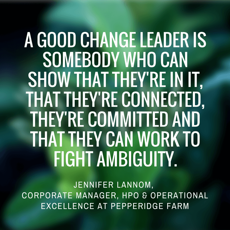 change leader operations excellence process improvement software