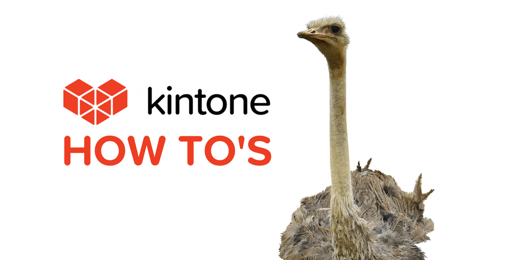 KINTONE HOW TO'S (6) (1)