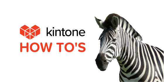 Kintone How Tos blog feature1