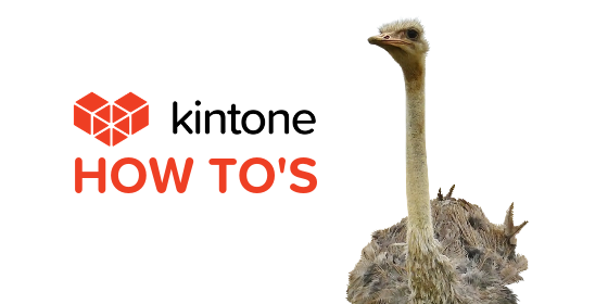 Kintone How Tos blog feature12