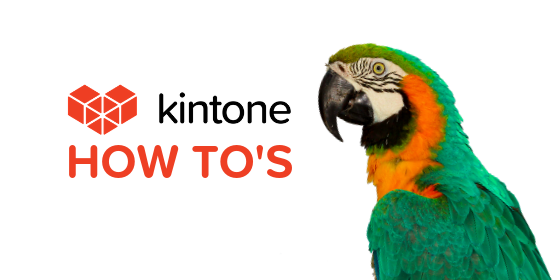 Kintone How Tos blog feature13