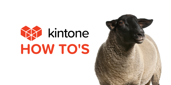 Kintone How Tos blog feature14