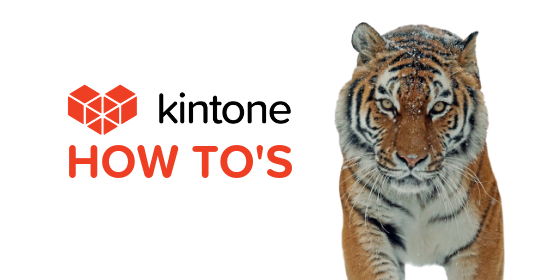 Kintone How Tos blog feature17