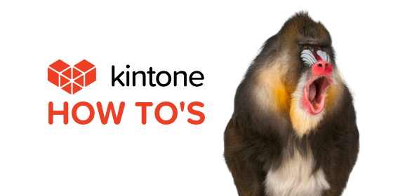 Kintone How Tos blog feature18