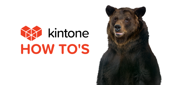 Kintone How Tos blog feature19