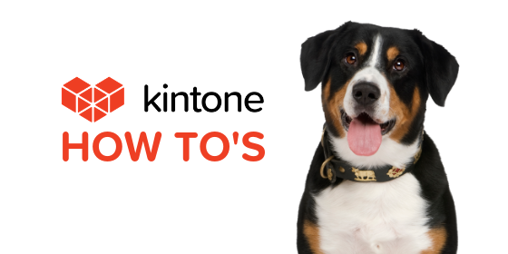 Kintone How Tos blog feature20