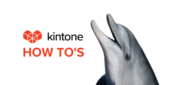Kintone How Tos blog feature3
