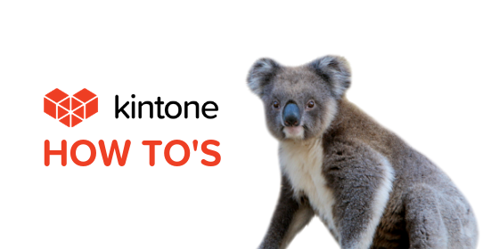 Kintone How Tos blog feature4