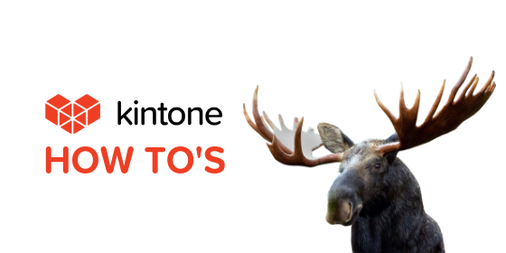 Kintone How Tos blog feature5