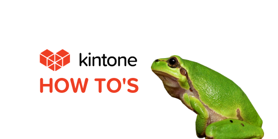 Kintone How Tos blog feature6