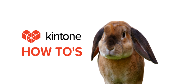 Kintone How Tos blog feature8
