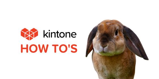 low code kintone report database platform (1)