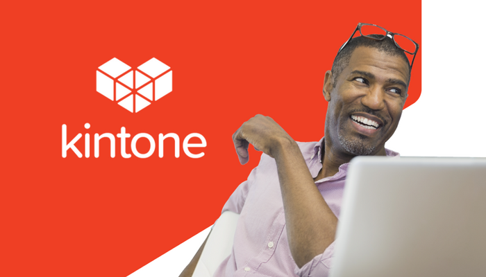 low code kintone report database platform (1)